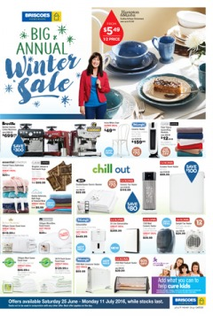 Big Annual Winter Sale