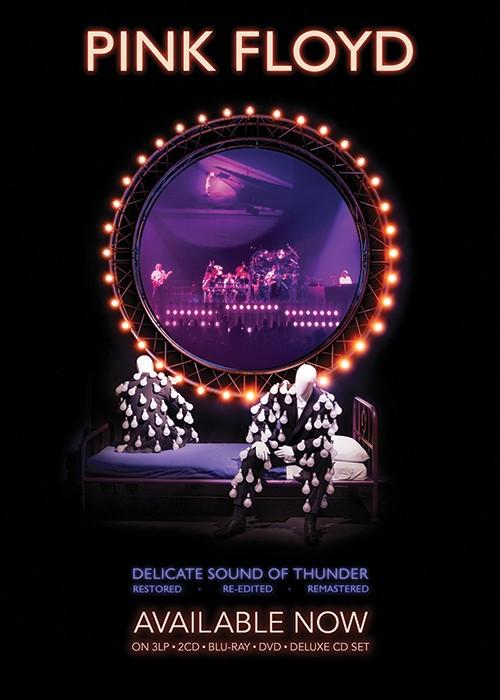Pink Floyd: Delicate Sound of Thunder Vinyl