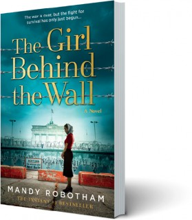 NEW-The-Girl-Behind-The-Wall on sale