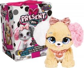 Present-Pets-Assortment on sale