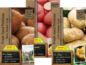 Seed-Potatoes-10-Pack on sale