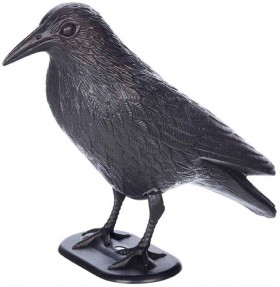 40-off-Spooky-Hollow-Crow-with-Stake on sale