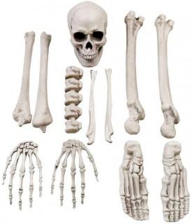 40-off-Spooky-Hollow-Bag-of-Bones on sale