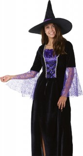 40-off-Spooky-Hollow-Adult-Witch-Costume on sale