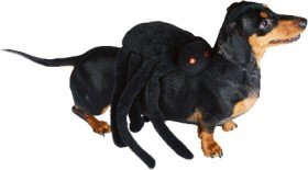 40-off-Spooky-Hollow-Spider-Pet-Costume on sale