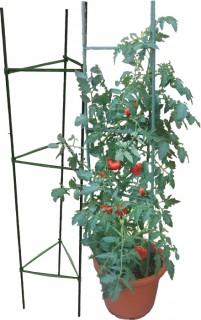 Tomato-Cage-150cm on sale
