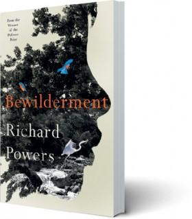 Bewilderment on sale